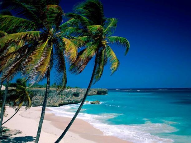 181011 105207indochina explorer tour cham island 5 640x480 - HOI AN - CHAM ISLANDS - HOI AN/ 1 DAY