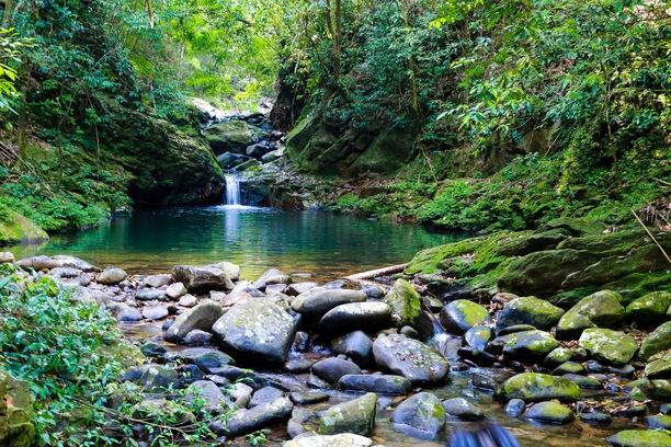 bach ma Bird watching tour in Bach Ma National Park in Hue 640x480 - BACH MA NATIONAL PARK PRIVATE TOUR